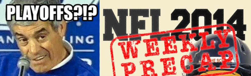 NFL2014/15 Conference Championship Picks